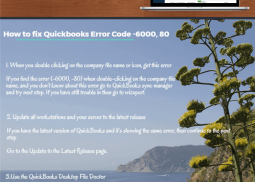 QuickBooks Error 6000 80 Infographics