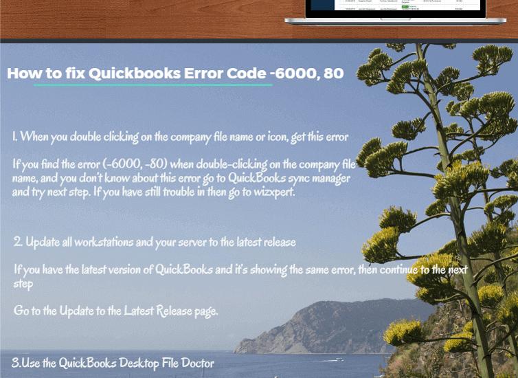 QuickBooks Error 6000 80 Infographics