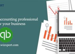 How an accounting professional help grow your business?