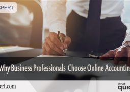 Reasons Why Business Professionals Choose Online Accounting Service