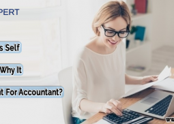 QuickBooks Self Employed: Why It Is Important For Accountant?