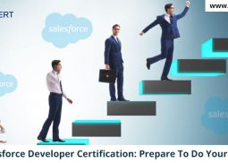 Salesforce Developer Certification: Prepare To Do Your Best