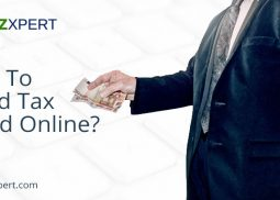 How To Avoid Tax Fraud Online?