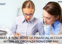 Key Roles & Functions of Financial Accounting Within an Organization/Company