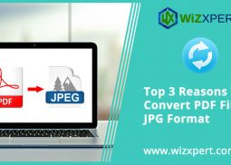 Top 3 Reasons To Convert PDF Files To JPG Format