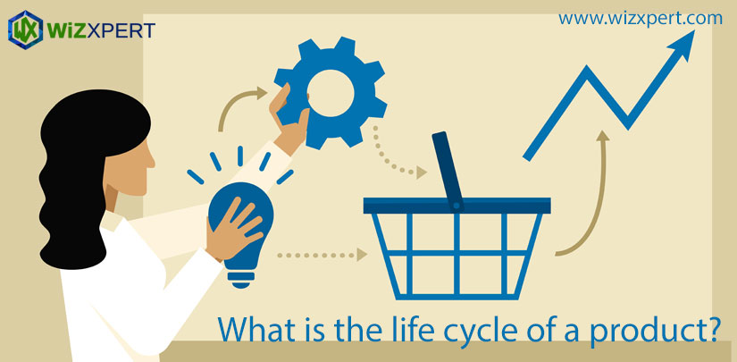 What is the life cycle of a product?