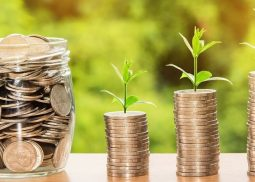 5 Effective Ways to Invest in Company's Free Money