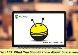 Internet Wiz 101: What You Should Know About Buzzstream Pricing