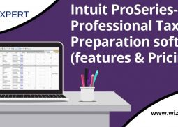 Intuit ProSeries - Professional Tax Preparation Software (Features & Pricing)
