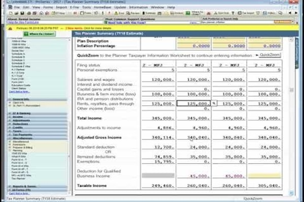 Intuit ProSeries-Tax Planner